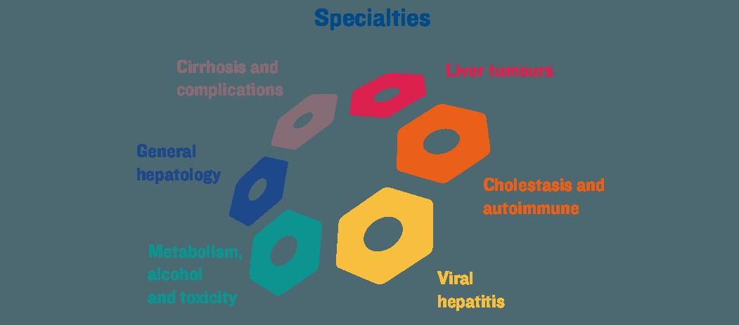 ILC 2019 specialties